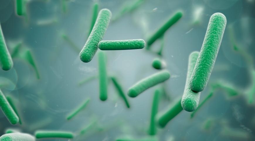 7 korzyści ze stosowania Lactobacillus acidophilus
