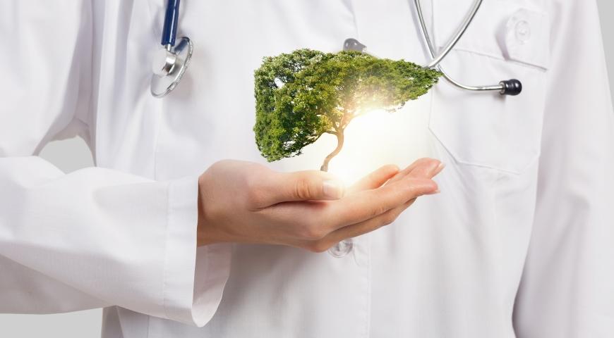 Bunt mitochondriów przyczyną problemów z wątrobą