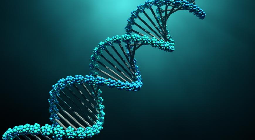 Czego uczy epigenetyka?