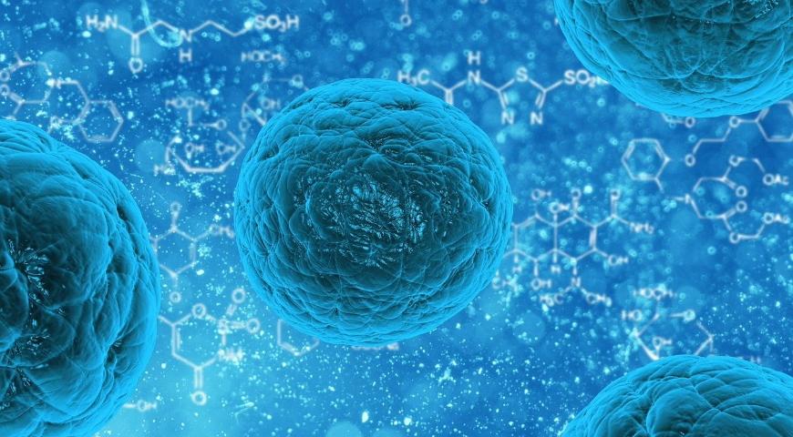 Enzym katalaza – funkcje i suplementacja