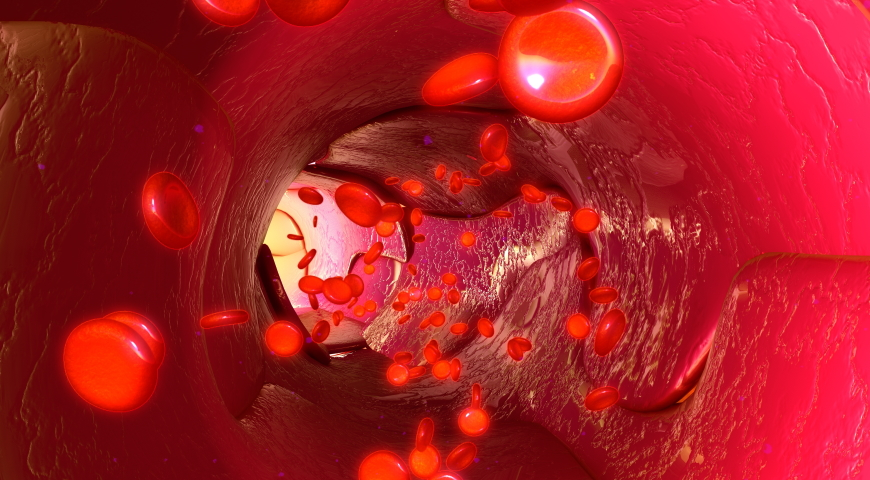 Homocysteina - jak wpływa na zdrowie?