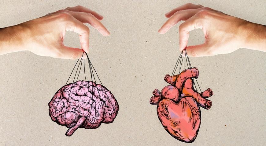 Homocysteina – winowajca chorób serca i umysłu.