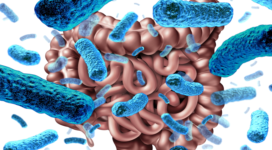 Korzyści z Lactobacillus rhamnosus