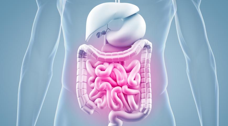 Lactobacillus reuteri – zalety, wady oraz bezpieczeństwo stosowania