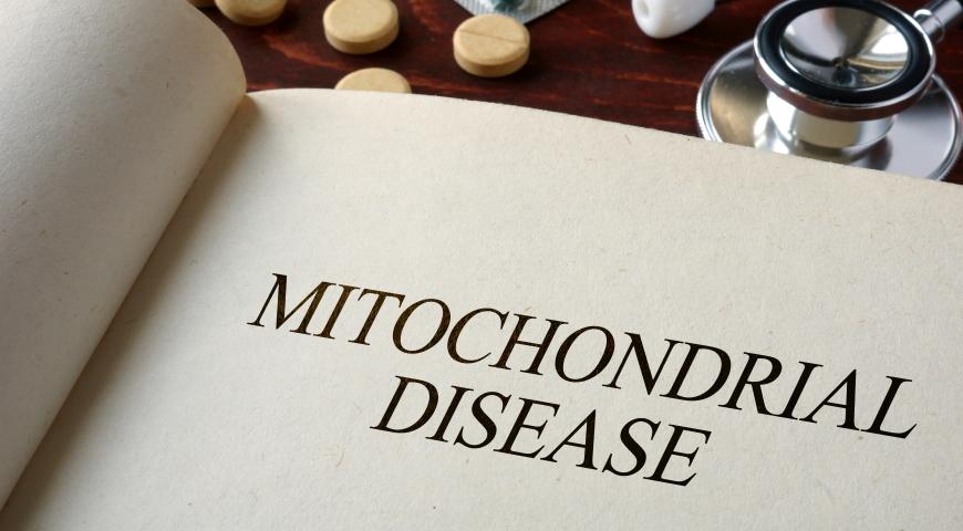 Mitochondria. Diagnostyka uszkodzeń mitochondrialnych i skuteczne metody terapii.