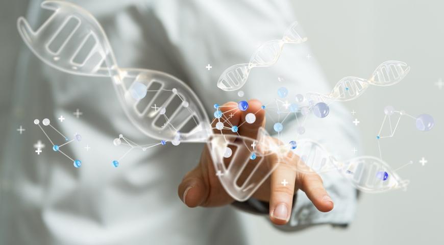 Mutacje genetyczne zwiększające nasze zapotrzebowanie na witaminę B12
