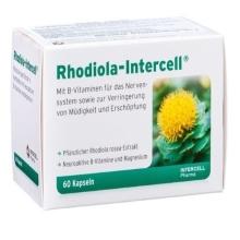 Rhodiola