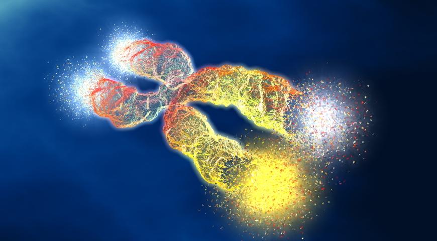 Proces metylacji oraz jego znaczenie dla naszego organizmu