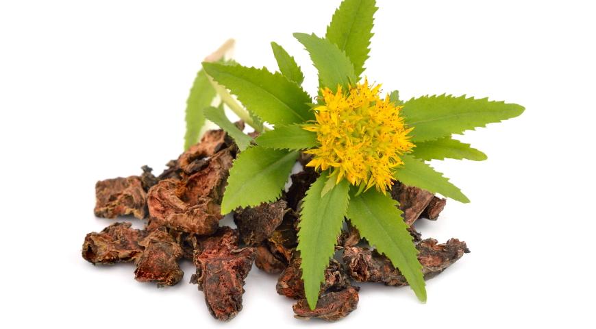 Substancje roślinne