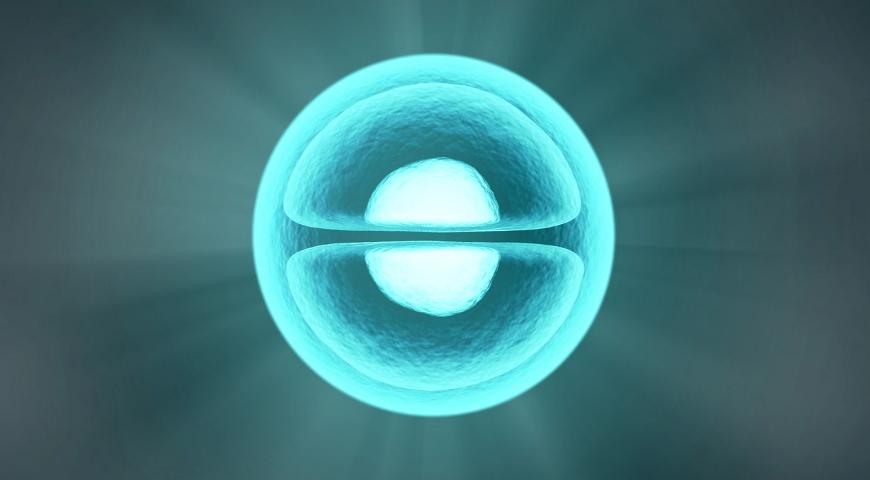 Pierwotne mitochondriopatie – PMD jako szczególny cel stosowania terapii mitochondrialnej