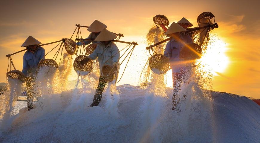 Cykl Pro & Contra: Sól – źródło życia czy biała śmierć?