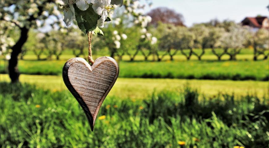 Serce – jedyny mięsień, który można złamać cz. 1