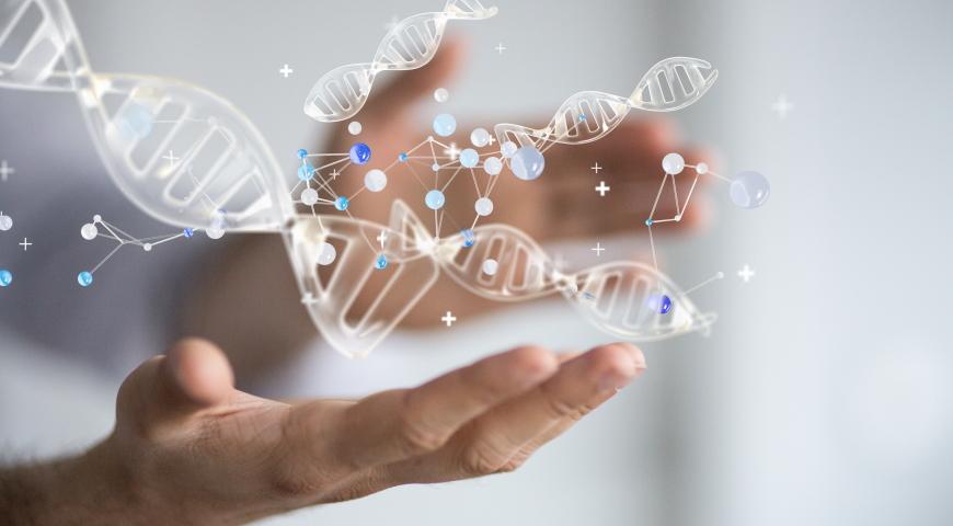 Ubichinol – na straży DNA i naszej młodości