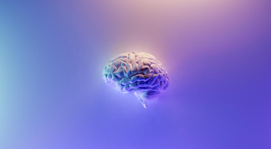 Udar mózgu – czynniki ryzyka, profilaktyka i rekonwalescencja